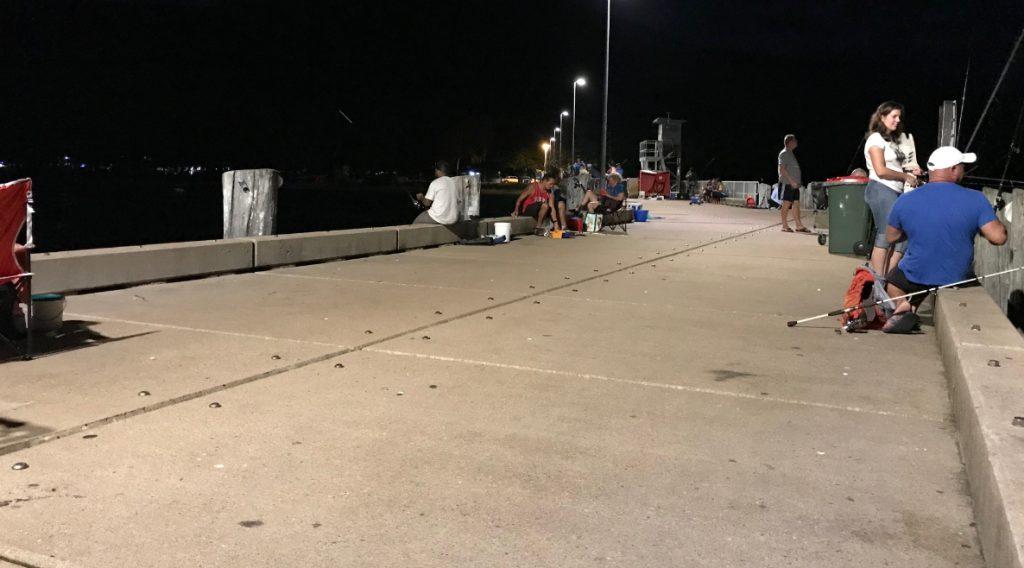 パームコーブ桟橋1