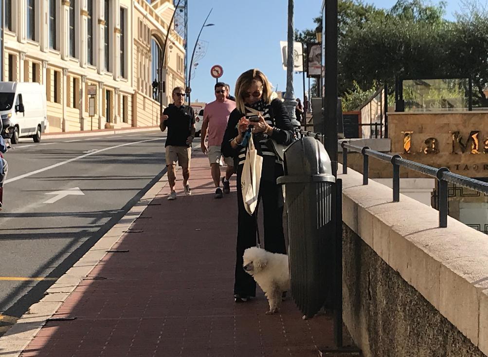 モナコ散歩中のモナ犬