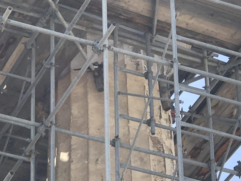 修復作業中のパルテノン神殿の足場に住んでいるスズメ